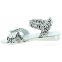 Lusi Silver